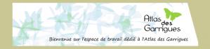 Look_bandeau_ATlas_test1.png