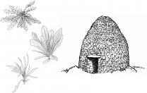 image Vignette.jpg (0.9MB) Lien vers: http://www.wikigarrigue.info/wakka.php?wiki=RDV2016mars